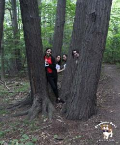 Tree07