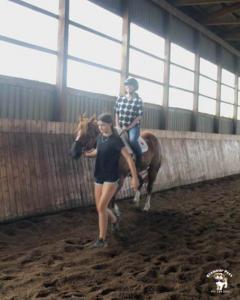 horse26